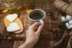 Tome parte num piquenique na natureza, mãos que guardam um copo do café preto, manta Imagens de Stock