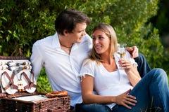 Tome parte num piquenique no lago com vinho no verão Imagens de Stock Royalty Free