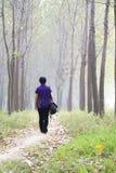 Tome uma caminhada Imagem de Stock