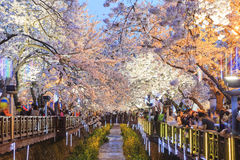 Tome uma viagem a Coreia do Sul foto de stock