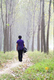 Tome una caminata Imagen de archivo