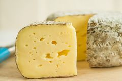 Tomette des Alpes, cheese of France Royalty Free Stock Images