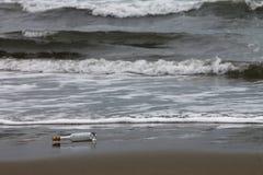 Tomglas på en kust Royaltyfri Bild