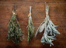 Tomilho, alecrins e Sage Culinary Herbs imagem de stock royalty free