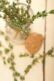 Tomilho fresco em um frasco de vidro Imagem de Stock Royalty Free