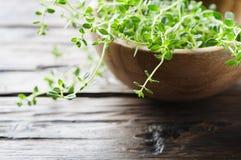 Tomillo verde fresco en la tabla de madera Foto de archivo