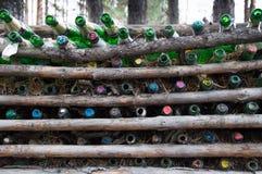 Tomma Champagne Bottles Between Pine Logs royaltyfria foton