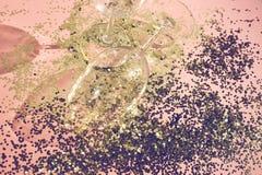 Tomma exponeringsglasbägare för champagne i guld- konfettier på tabellen festlig bakgrund Champagne med den isolerade flygballong arkivfoton
