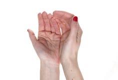 tomma händer öppnar Royaltyfri Fotografi