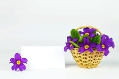Tomma påskkort och blommor i korgen Arkivfoto
