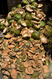 Tomma shels av nya kokosnötter i marknaden Royaltyfria Bilder