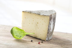 Tomme de Savoie, a semi firm french cheese Royalty Free Stock Image