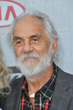 Tommy Chong y Shelby Chong foto de archivo