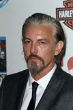 Tommy Flanagan Royalty Free Stock Images