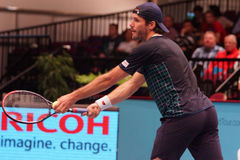 Tommy Haas (GER) Stock Image