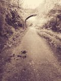 Tommys Lane, The Old Train Lines royalty free stock photography