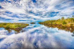 Tomoka River State Park Landscape royaltyfria foton