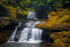 Tompkins vattenfall, catskillberg royaltyfri foto