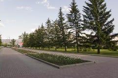 Tomsk, Russia, quadrato di Lenin 10 luglio 2017 Parte centrale della città Vie di camminata di estate Fotografia Stock