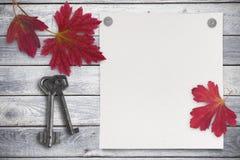Tomt ark av papper och röda sidor på wood bakgrund Arkivfoton