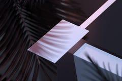 Tomt kort på arkitekturbakgrund med skugga för tropisk växt framförande 3d vektor illustrationer