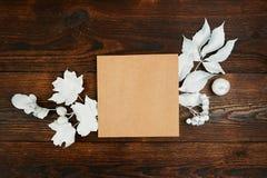 Tomt kraft ark av den lekmanna- modellen för papperslägenhet för ditt utrymme för konst-, bild- eller handbokstäversammansättning arkivfoton
