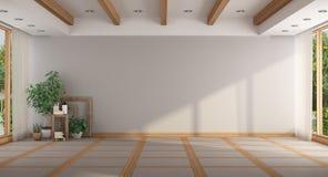 Tomt minimalist stort rum stock illustrationer