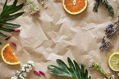 Tomt papper som dekoreras med blomman och frukter arkivbild