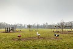 Tomt parkera lekplatsen, utomhus- lekutrustning, ingen på Park Arkivbild