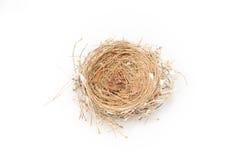 tomt rede för fågel Royaltyfria Foton