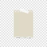Tomt sönderrivet papper på det klibbiga bandet, ordnar till för ditt meddelande också vektor för coreldrawillustration Arkivbilder