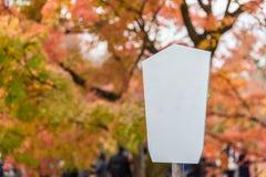 Tomt vitt bräde med färgglade trädsidor för härlig natur in Fotografering för Bildbyråer