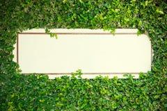 Tomt vitt bräde med gräsplansidor runt om hörn Abstrakt begrepp tillbaka Fotografering för Bildbyråer