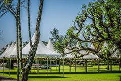 Tomt vitt tält inget på det gröna gräset med blomman och trädet på bakgrunden - foto indonesia bogor royaltyfri foto