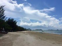 tomt wild för strand Royaltyfri Foto