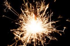 Tomtebloss för nytt år på svart bakgrund arkivfoton