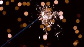 Tomtebloss som framme bränner av omgivande ljus i ultrarapid lager videofilmer