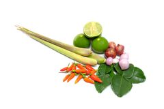 TomYum ingredients Royalty Free Stock Photos