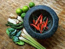 TOMYUM, thailändische Lebensmittelgewürzbestandteile stockbilder
