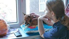 Tonårig flicka med lite terriern stock video