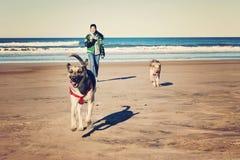 Tonåring och hundkapplöpning royaltyfria bilder