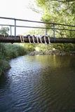 Tonåringar som ligger på träbron ovanför floden royaltyfria foton