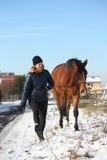Tonåringflicka och brunthäst som går i snön Arkivbild