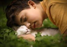 Tonåringpojken med katten i mindre kulle ta sig en tupplur royaltyfri fotografi