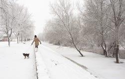 Tonårs- flicka som går hunden i vinter Arkivfoton