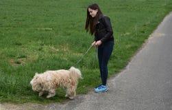 Tonårs- flicka som hundbarnvakt Royaltyfri Fotografi