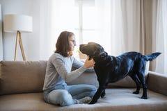 Tonårs- flicka som inomhus sitter på en soffa och att spela med en husdjurhund arkivbild