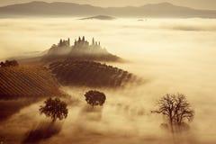 Tonący w mgle Fotografia Royalty Free