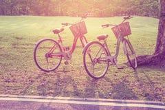 Ton de bicyclette de vintage beau sur le parc Image libre de droits