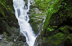 Ton Sai Waterfall Imagen de archivo libre de regalías